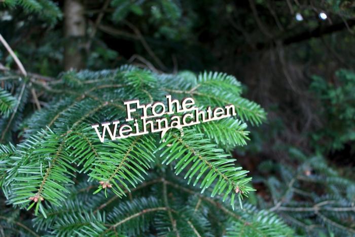 """Serviettenring und Astreiter """"Frohe Weihnachten"""""""